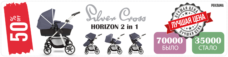 Коляска 2 в 1 Silver Cross Horizon Go + Люлька